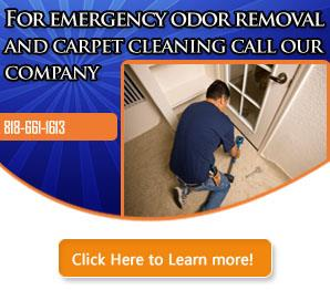 Our Infographic | Carpet Cleaning Sunnyvale, CA
